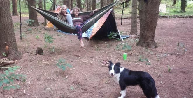 hammockdoggy2
