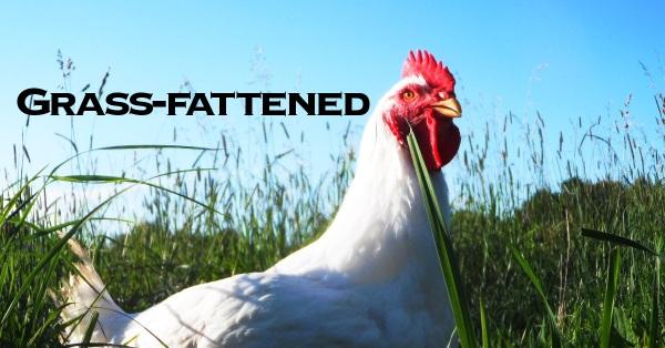 grassfattenedFB1200x628v2